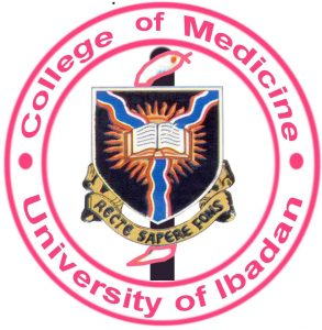 Ikechukwu's guide to obtaining a University of Ibadan Transcript.